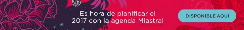 banner-store-agenda-2017